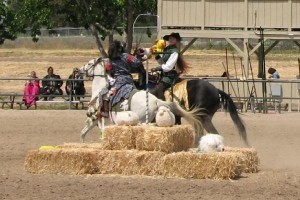 Dona Arabella attempts a ride-off with THL Virginia at the Altavia Equestrian Championship in 2008.